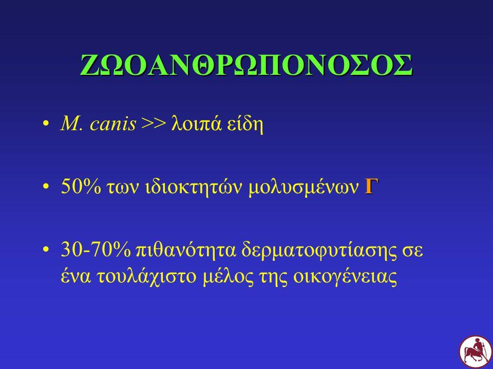 ΖΩΟΑΝΘΡΩΠΟΝΟΣΟΣ M. canis >> λοιπά είδη