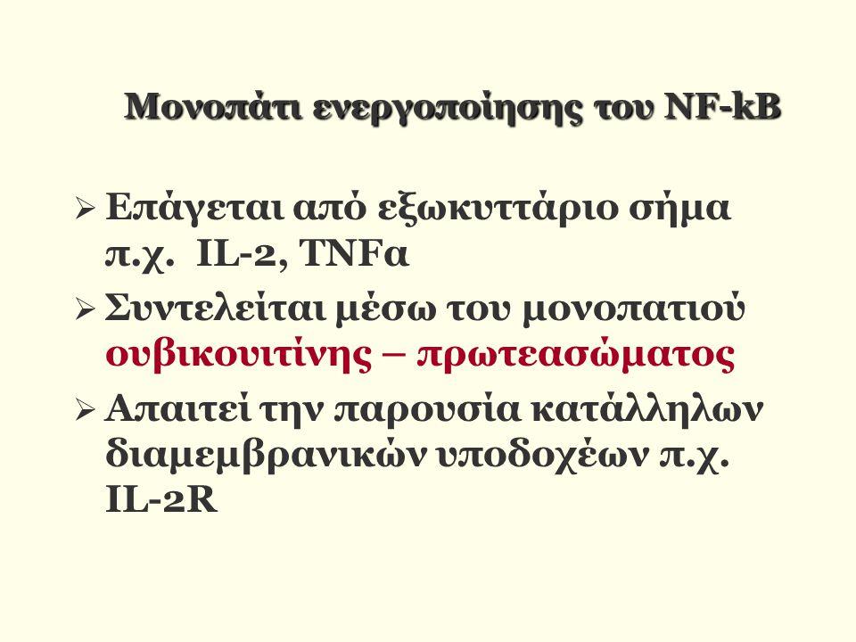 Moνοπάτι ενεργοποίησης του NF-kB