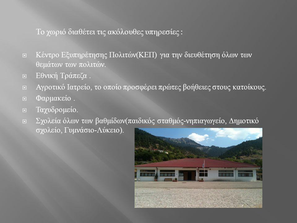 Το χωριό διαθέτει τις ακόλουθες υπηρεσίες :