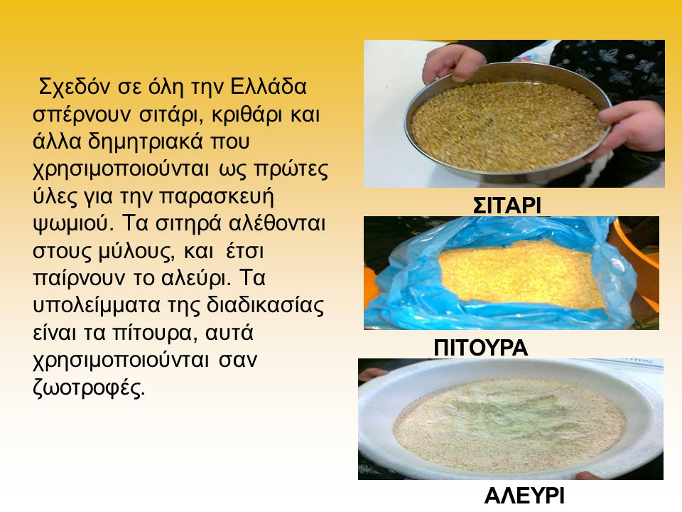 Σχεδόν σε όλη την Ελλάδα σπέρνουν σιτάρι, κριθάρι και άλλα δημητριακά που χρησιμοποιούνται ως πρώτες ύλες για την παρασκευή ψωμιού. Τα σιτηρά αλέθονται στους μύλους, και έτσι παίρνουν το αλεύρι. Τα υπολείμματα της διαδικασίας είναι τα πίτουρα, αυτά χρησιμοποιούνται σαν ζωοτροφές.