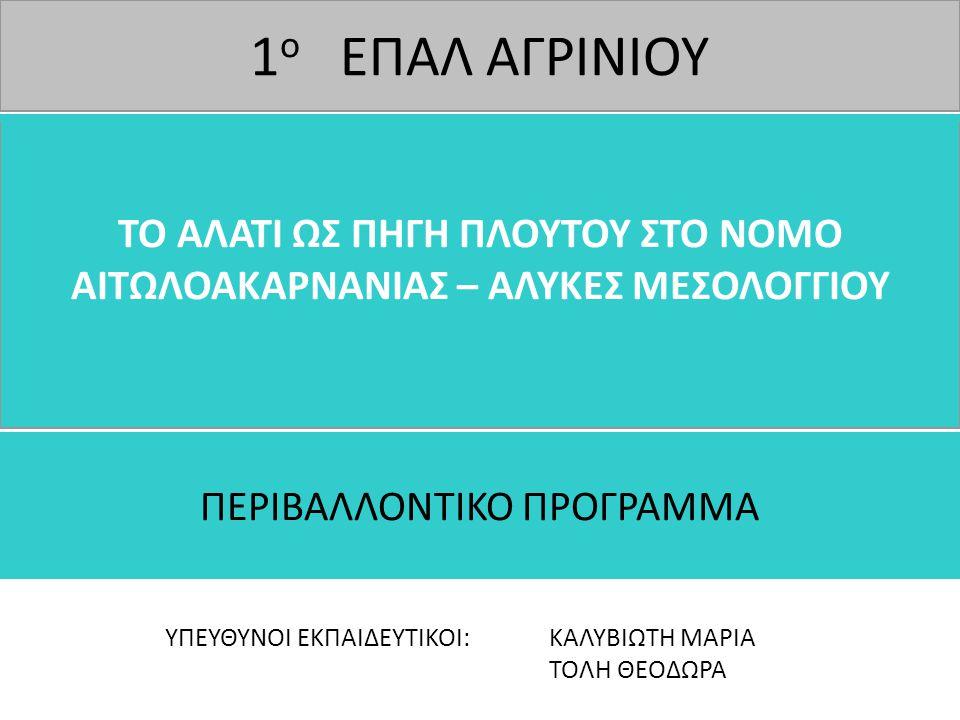 ΠΕΡΙΒΑΛΛΟΝΤΙΚΟ ΠΡΟΓΡΑΜΜΑ