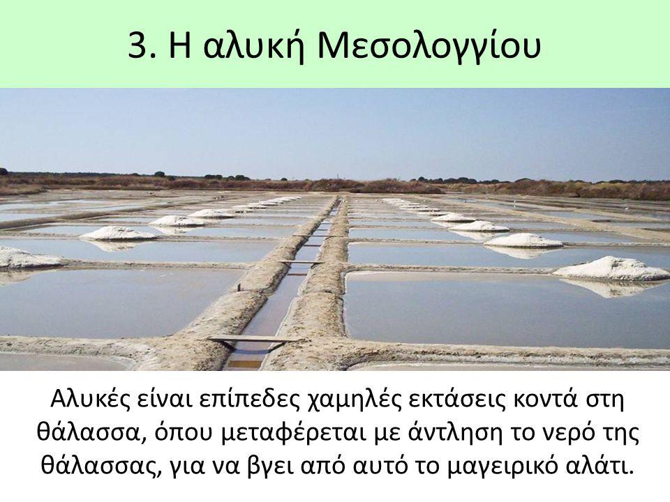 3. Η αλυκή Μεσολογγίου