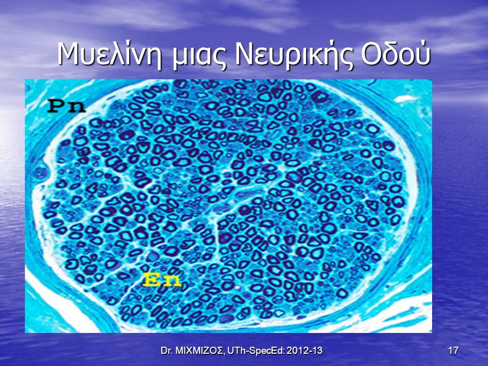 Μυελίνη μιας Νευρικής Οδού