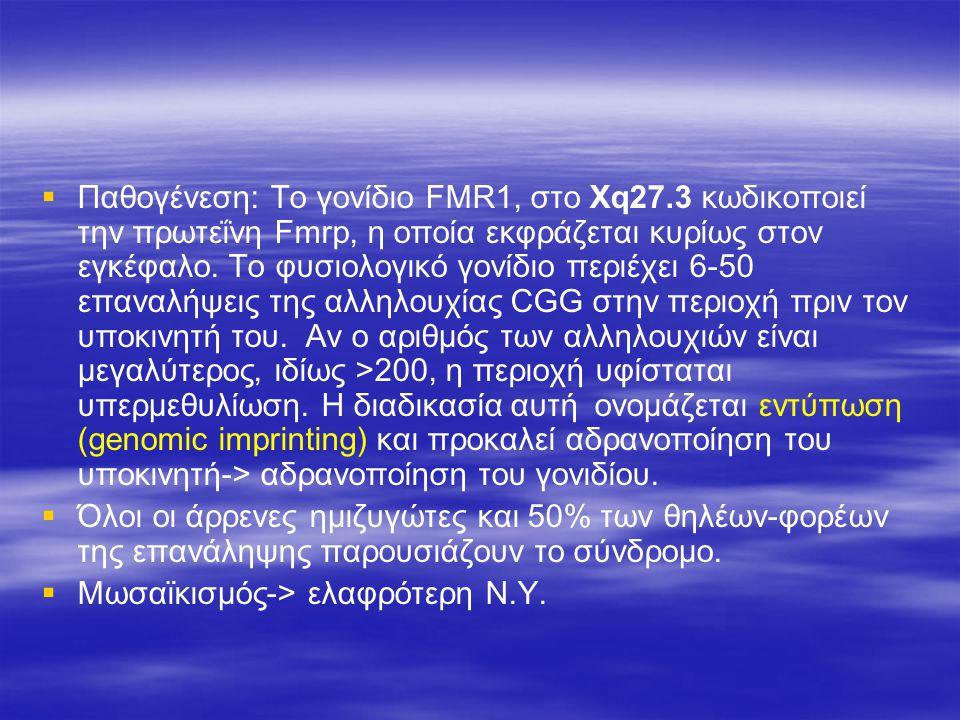 Παθογένεση: Tο γονίδιο FMR1, στο Χq27