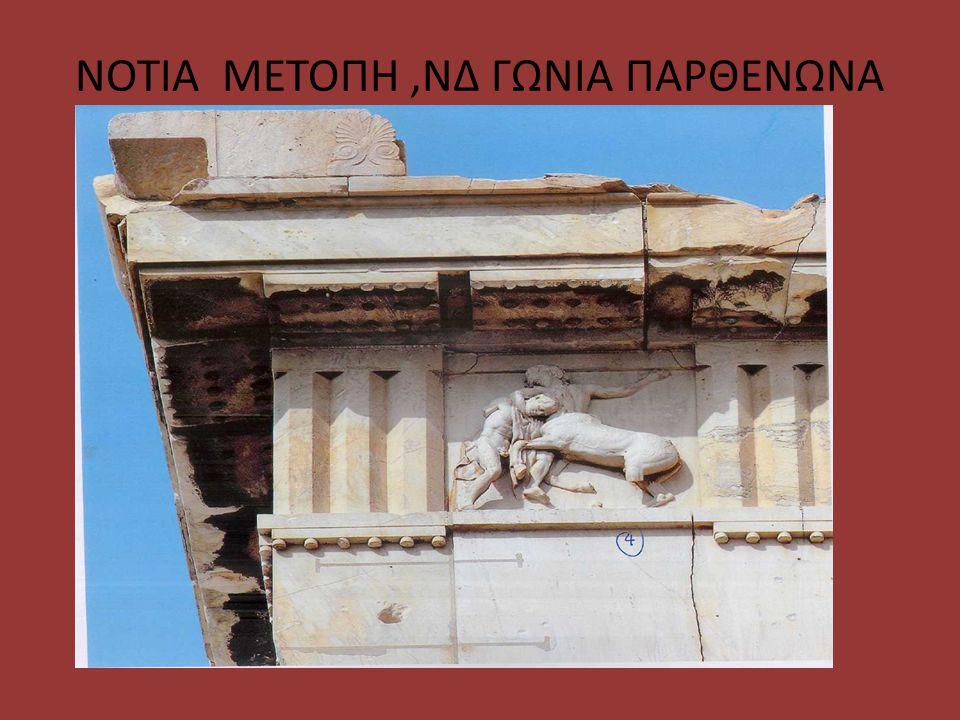 ΝΟΤΙΑ ΜΕΤΟΠΗ ,ΝΔ ΓΩΝΙΑ ΠΑΡΘΕΝΩΝΑ