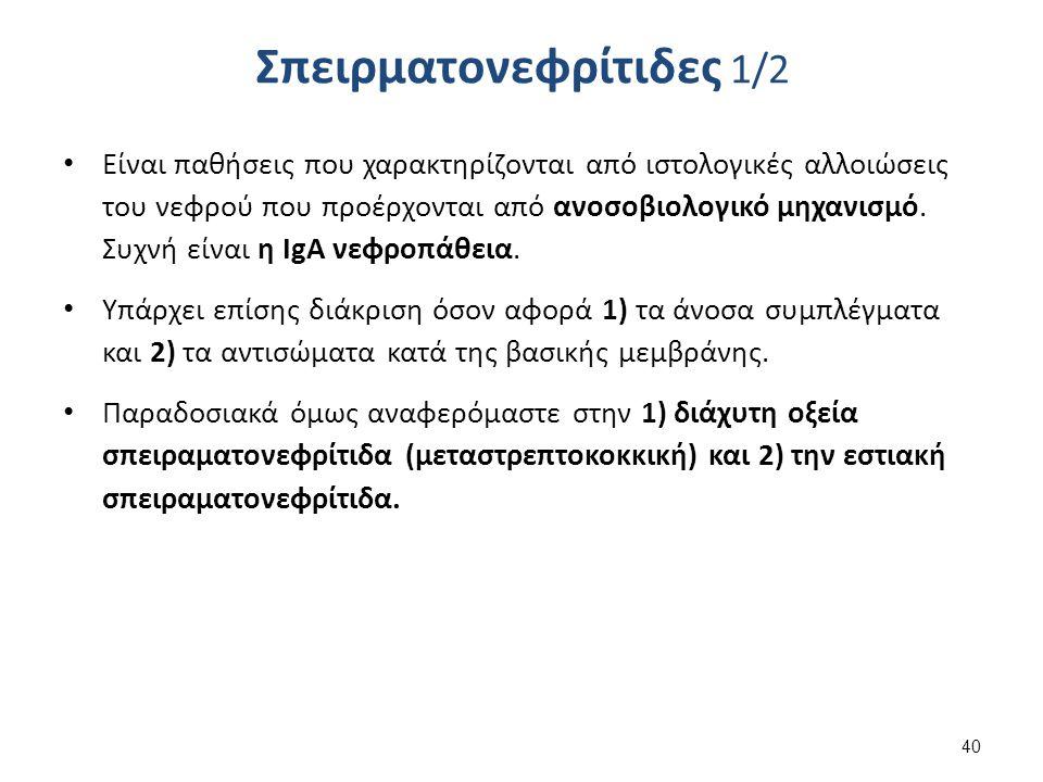 Σπειρματονεφρίτιδες 2/2