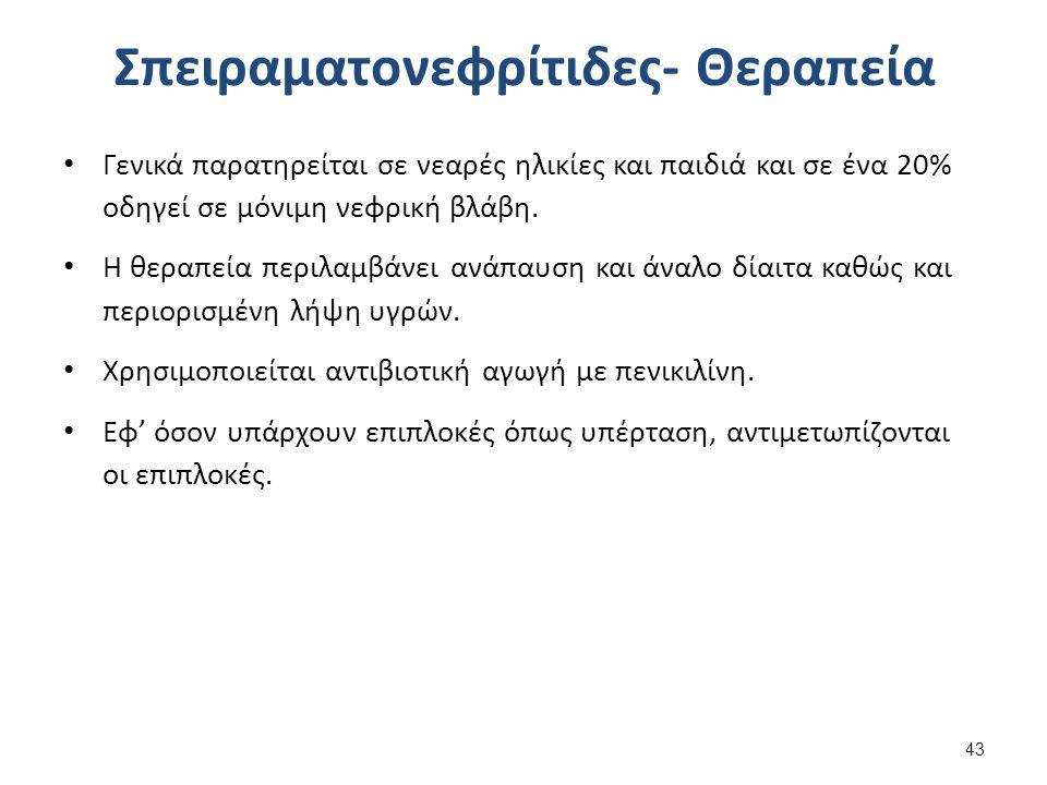 Νεφρωσικό Σύνδρομο 1/2 Το νεφρωσικό σύνδρομο χαρακτηρίζεται από:
