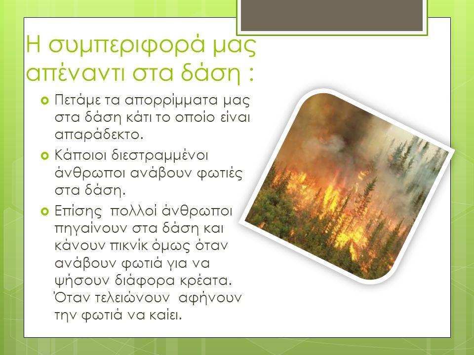 Η συμπεριφορά μας απέναντι στα δάση :