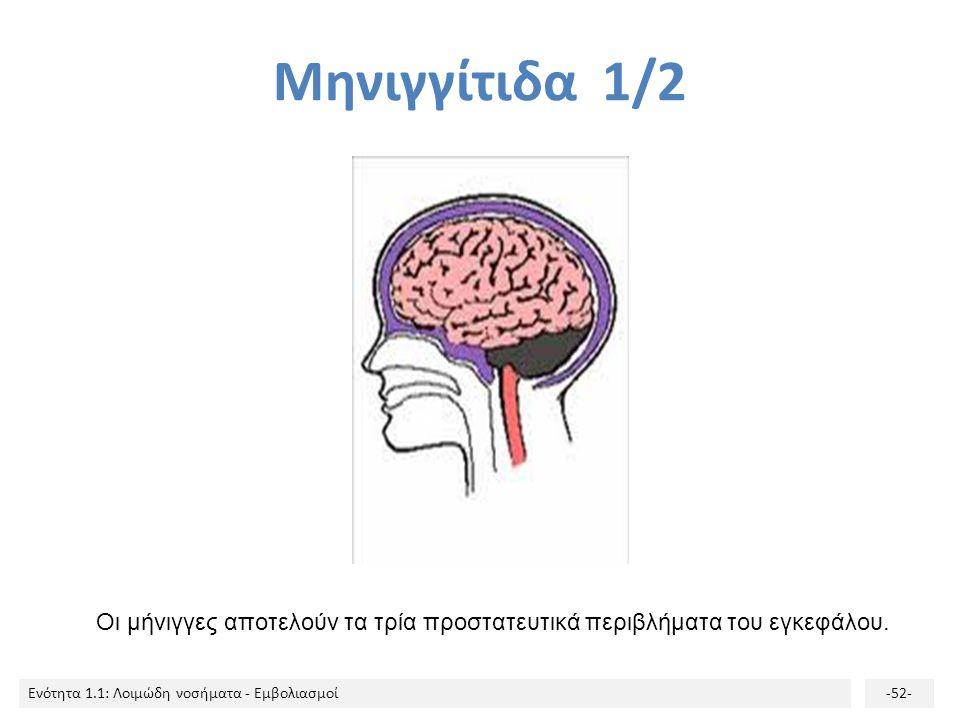 Μηνιγγίτιδα 1/2 Οι μήνιγγες αποτελούν τα τρία προστατευτικά περιβλήματα του εγκεφάλου.
