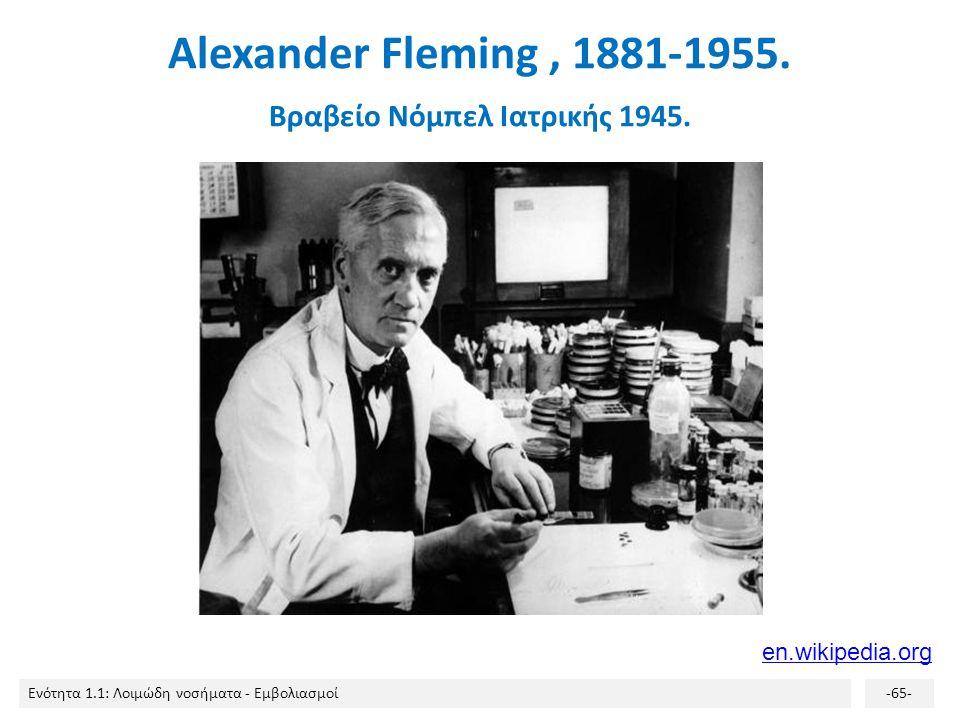 Alexander Fleming , 1881-1955. Βραβείο Νόμπελ Ιατρικής 1945.