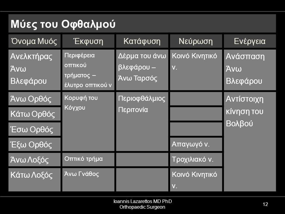Ioannis Lazarettos MD PhD Orthopaedic Surgeon