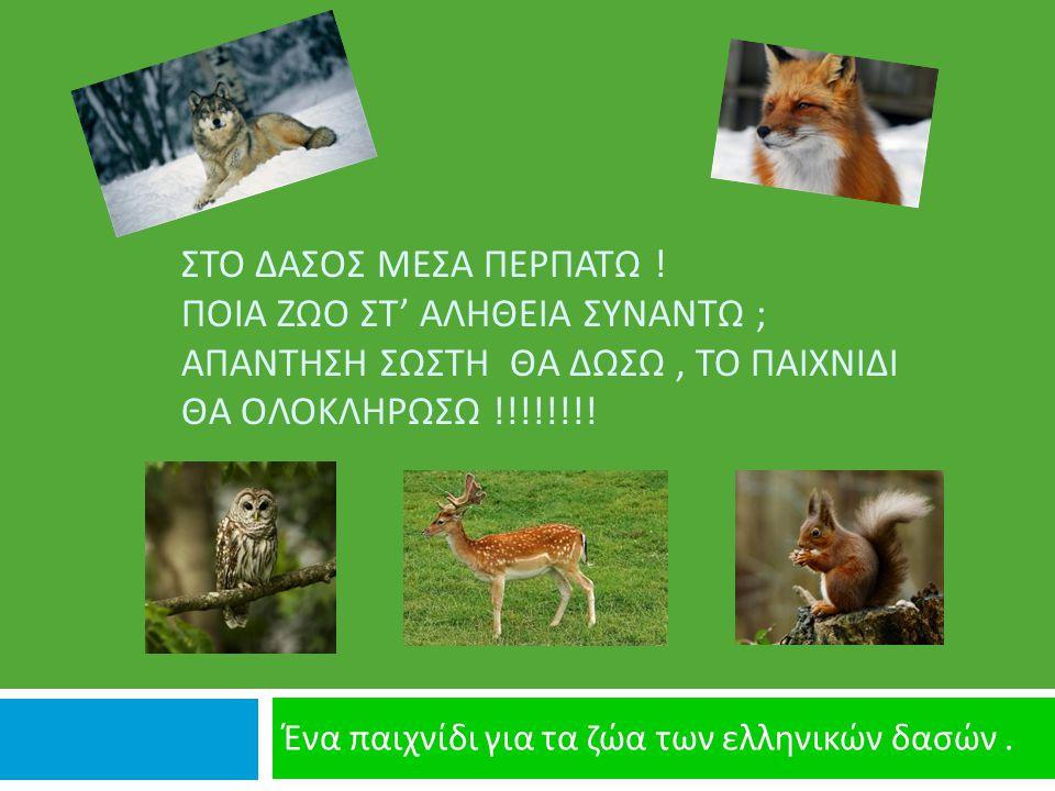 Ένα παιχνίδι για τα ζώα των ελληνικών δασών .