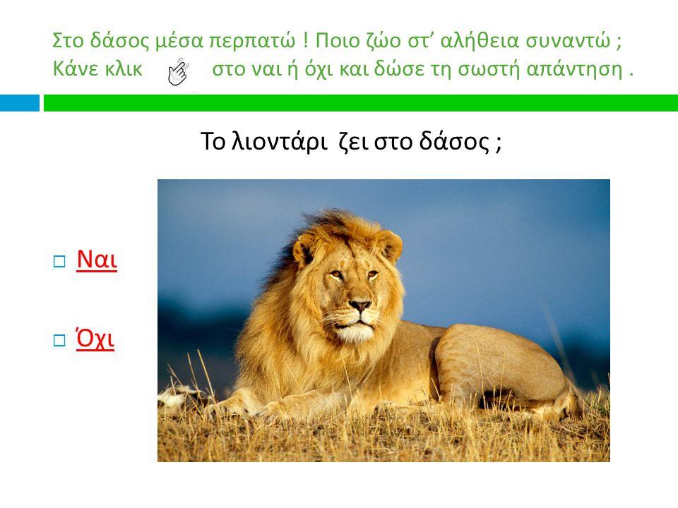 Το λιοντάρι ζει στο δάσος ;