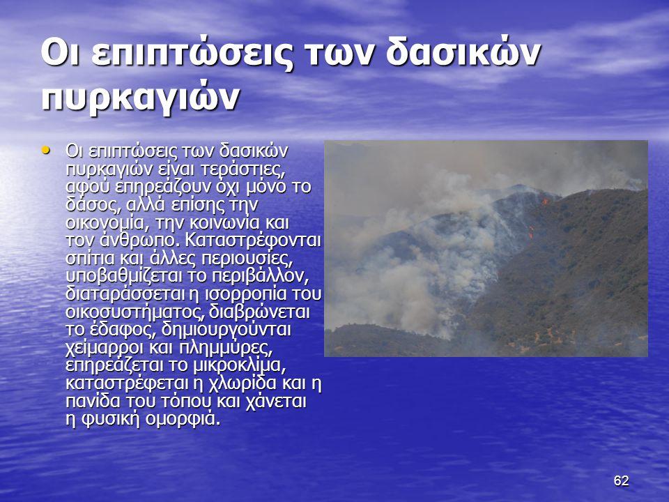 Οι επιπτώσεις των δασικών πυρκαγιών