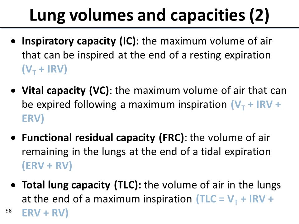 Lung volumes and capacities (2)