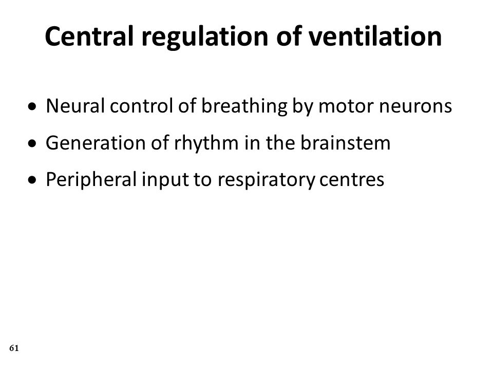 Central regulation of ventilation