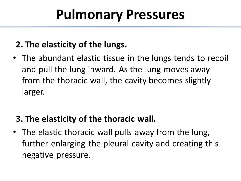 Pulmonary Pressures 2. The elasticity of the lungs.