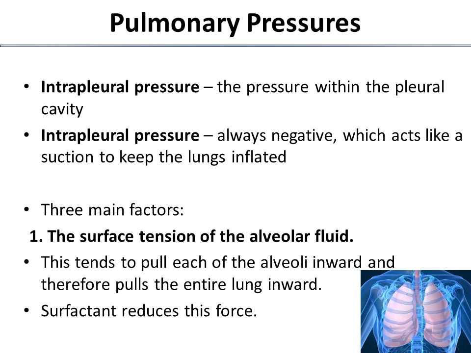 Pulmonary Pressures Intrapleural pressure – the pressure within the pleural cavity.