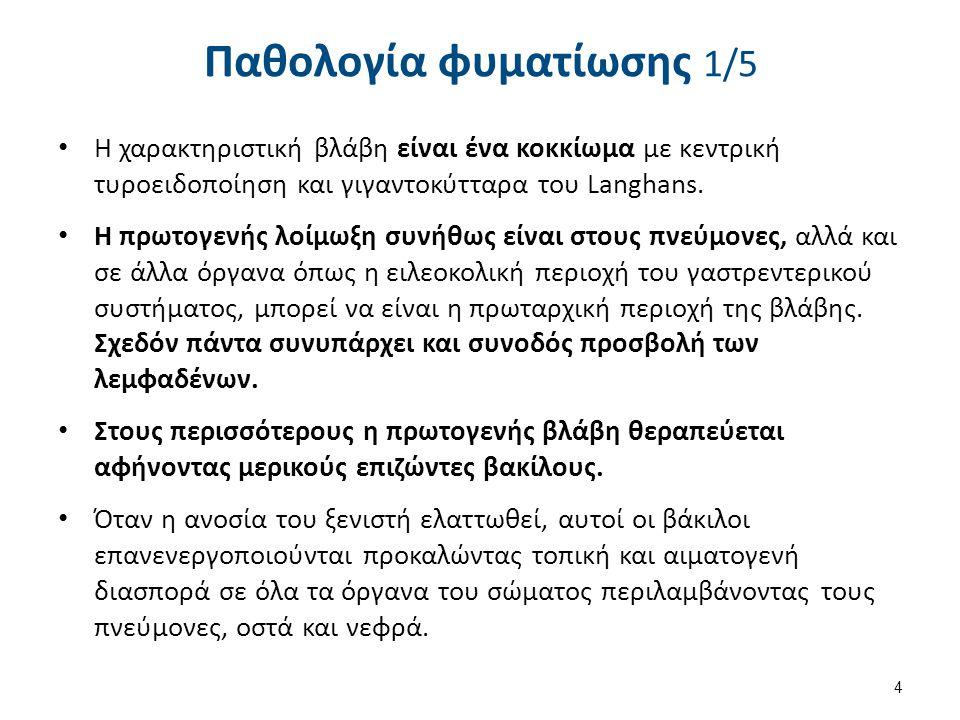 Παθολογία φυματίωσης 2/5
