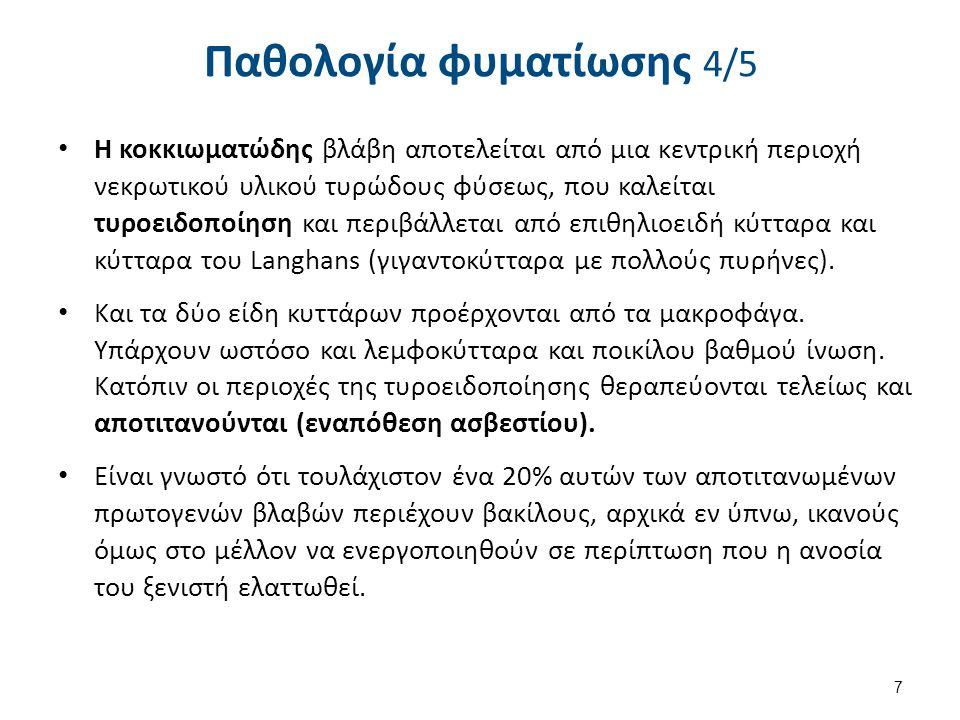 Παθολογία φυματίωσης 5/5