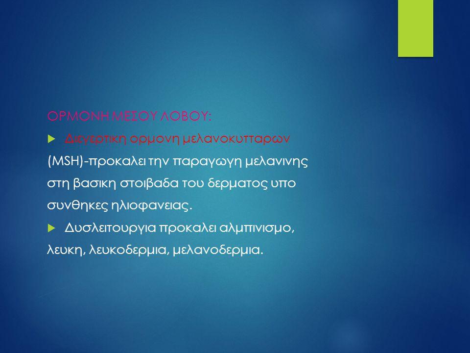 ΟΡΜΟΝΗ ΜΕΣΟΥ ΛΟΒΟΥ: Διεγερτικη ορμονη μελανοκυτταρων. (MSH)-προκαλει την παραγωγη μελανινης. στη βασικη στοιβαδα του δερματος υπο.