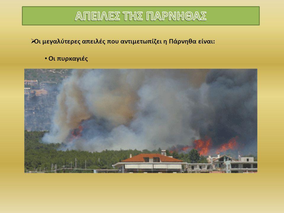 ΑΠΕΙΛΕΣ ΤΗΣ ΠΑΡΝΗΘΑΣ Οι μεγαλύτερες απειλές που αντιμετωπίζει η Πάρνηθα είναι: Οι πυρκαγιές