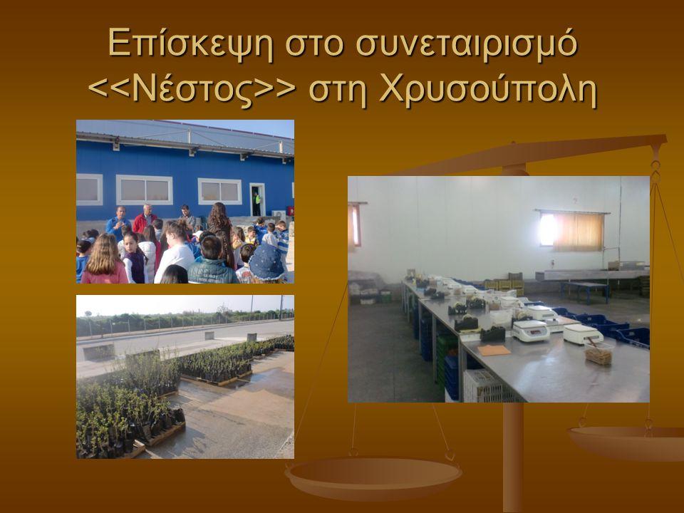 Επίσκεψη στο συνεταιρισμό <<Νέστος>> στη Χρυσούπολη