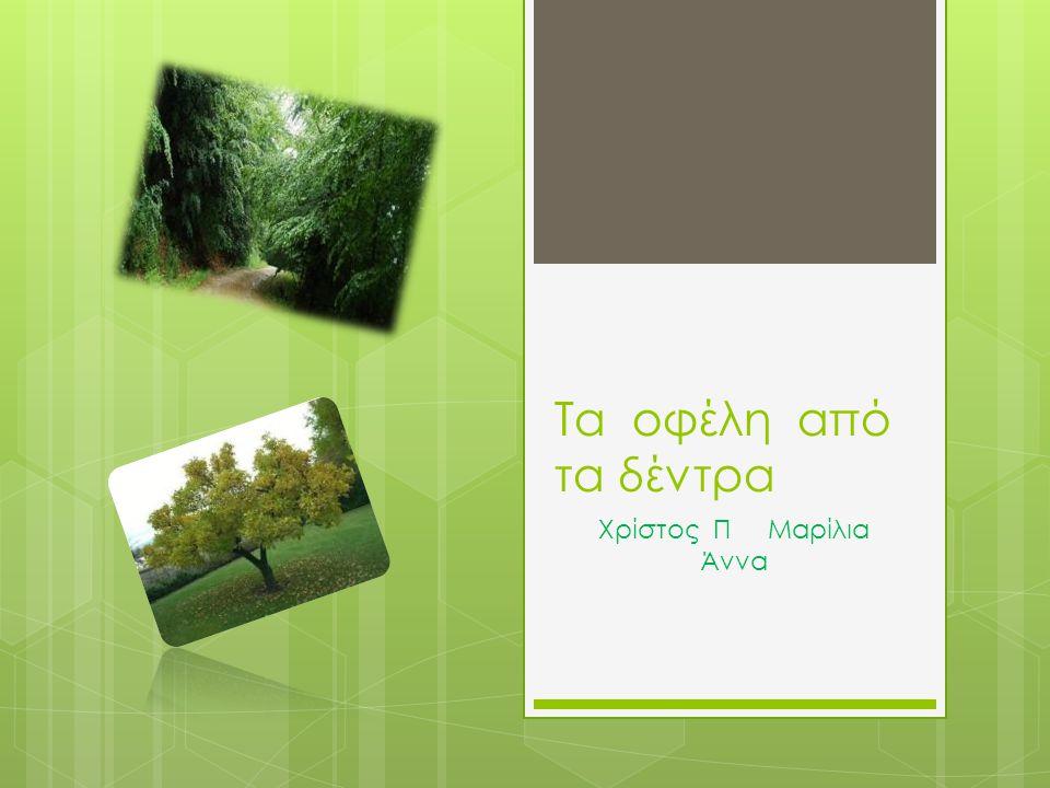Τα οφέλη από τα δέντρα Χρίστος Π Μαρίλια Άννα