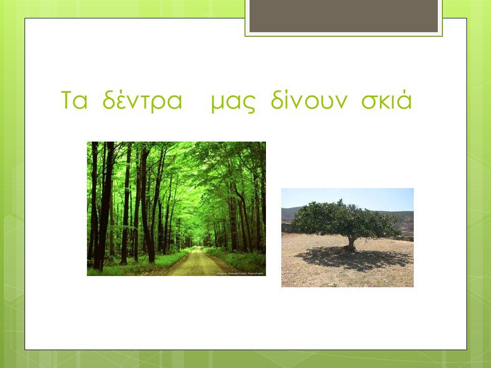 Τα δέντρα μας δίνουν σκιά