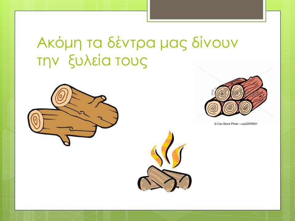 Ακόμη τα δέντρα μας δίνουν την ξυλεία τους