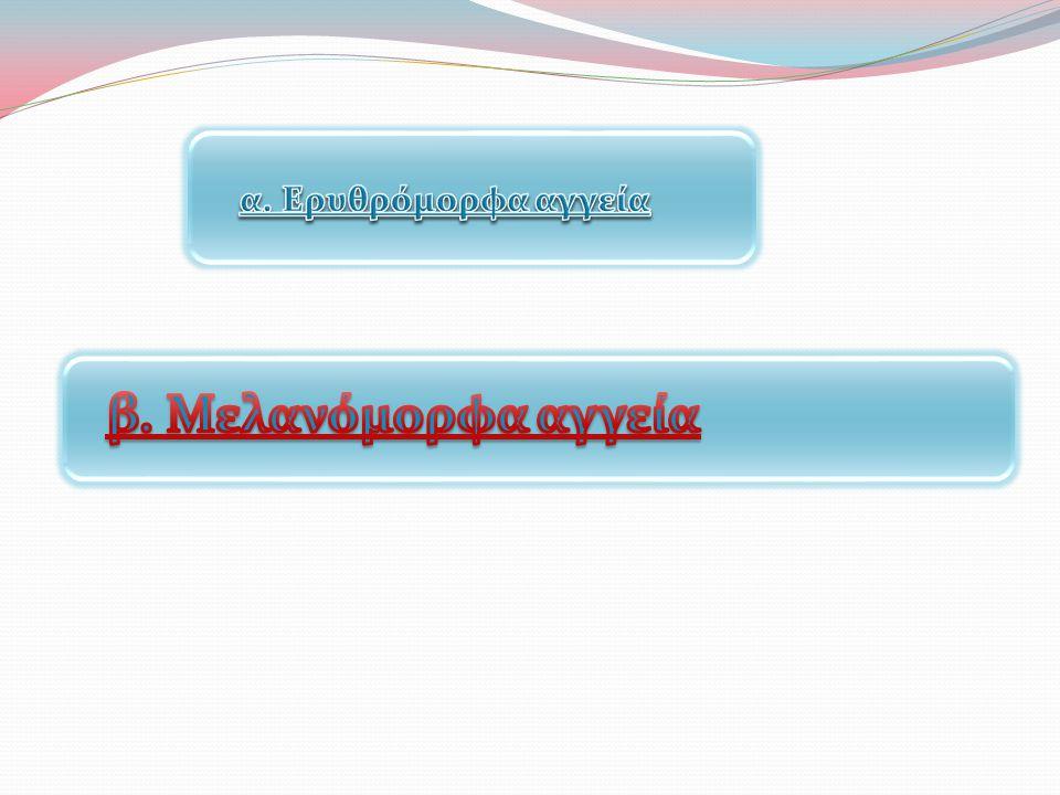 α. Ερυθρόμορφα αγγεία β. Μελανόμορφα αγγεία