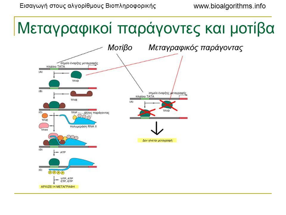 Μεταγραφικοί παράγοντες και μοτίβα