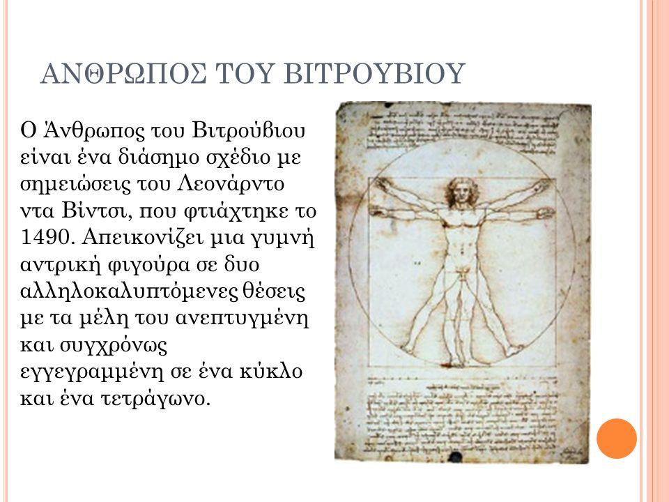 ΑΝΘΡΩΠΟΣ ΤΟΥ ΒΙΤΡΟΥΒΙΟΥ
