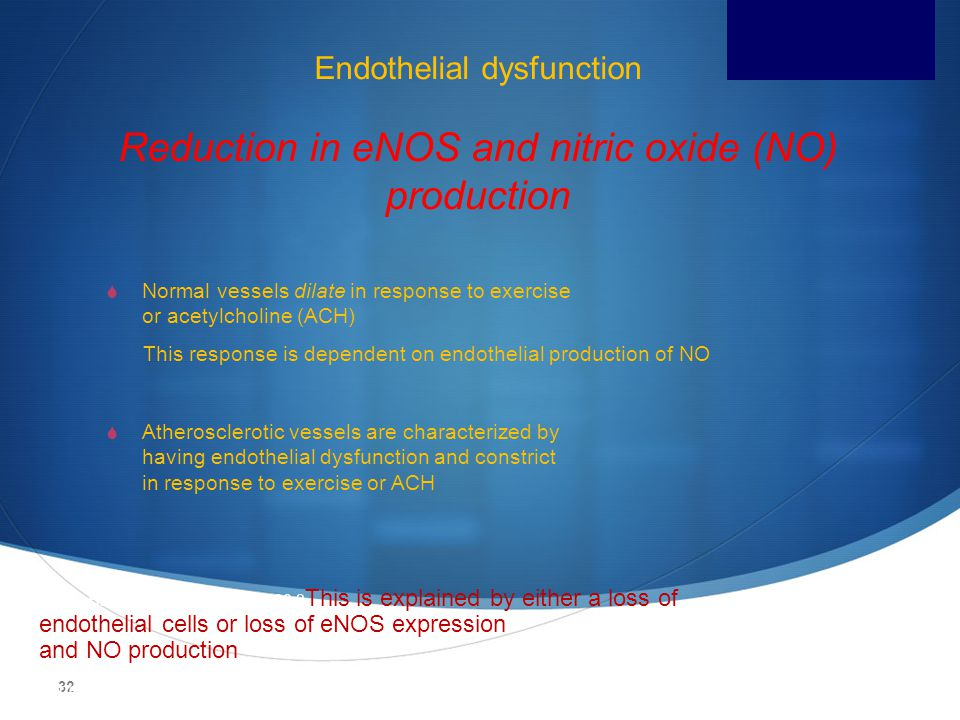 Endothelial dysfunction Reduction in eNOS and nitric oxide (NO) production