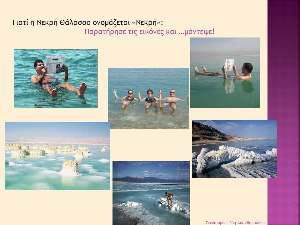Γιατί η Νεκρή Θάλασσα ονομάζεται «Νεκρή»;