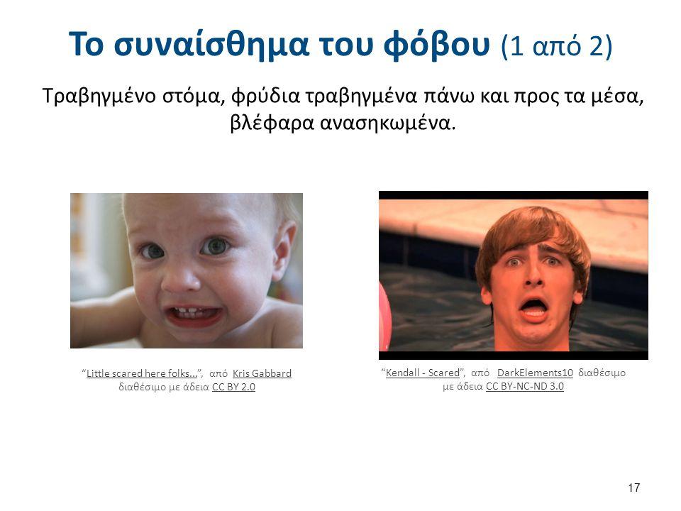 Το συναίσθημα του φόβου (2 από 2)