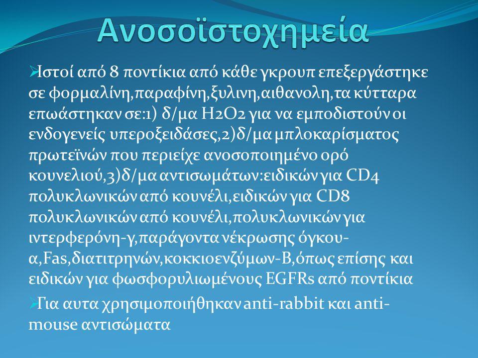 Ανοσοϊστοχημεία