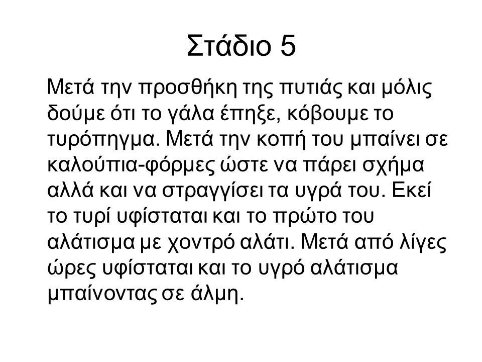 Στάδιο 5