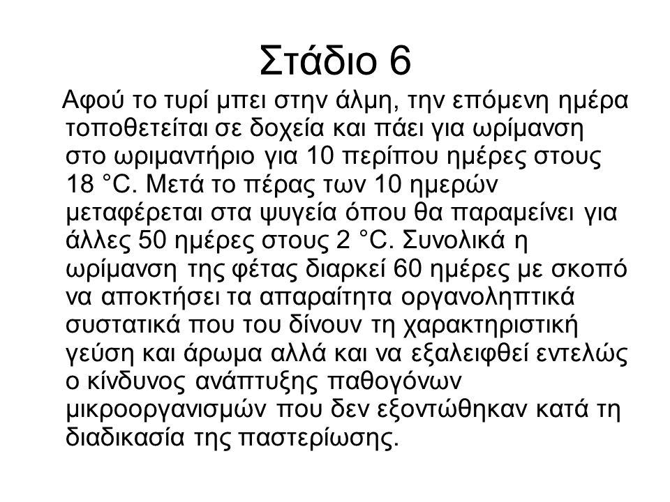 Στάδιο 6