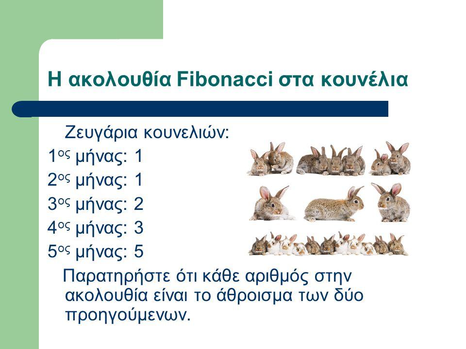 Η ακολουθία Fibonacci στα κουνέλια