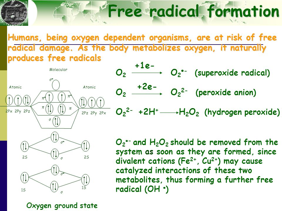 Free radical formation