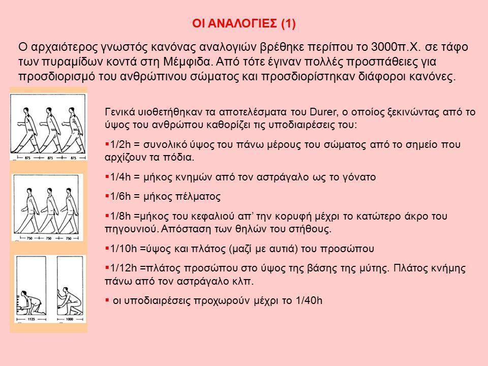 ΟΙ ΑΝΑΛΟΓΙΕΣ (1)