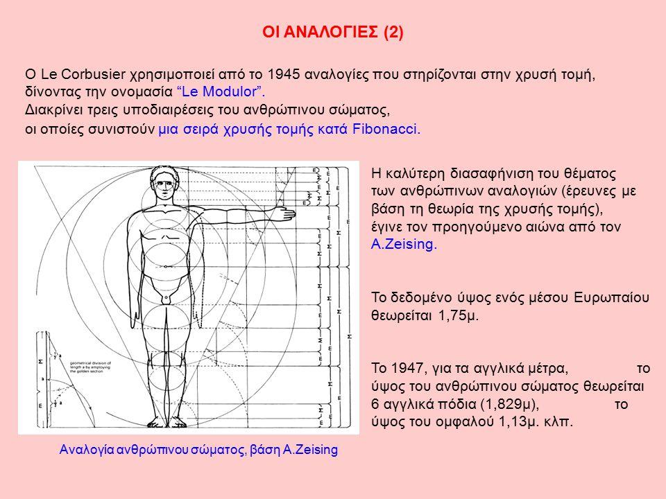 Αναλογία ανθρώπινου σώματος, βάση A.Zeising