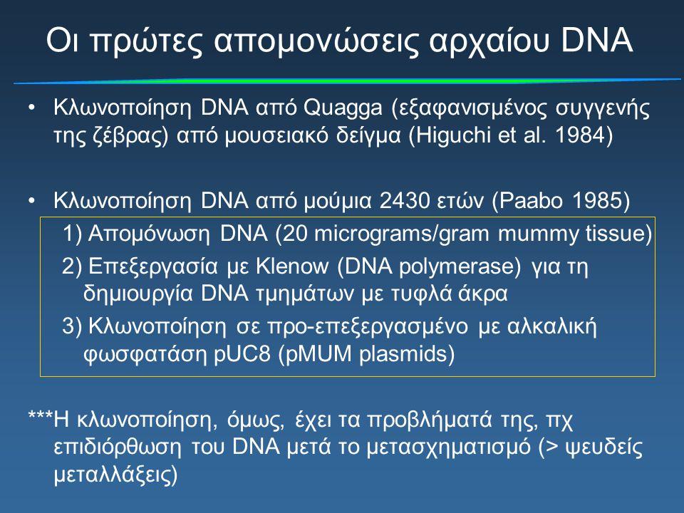 Οι πρώτες απομονώσεις αρχαίου DNA