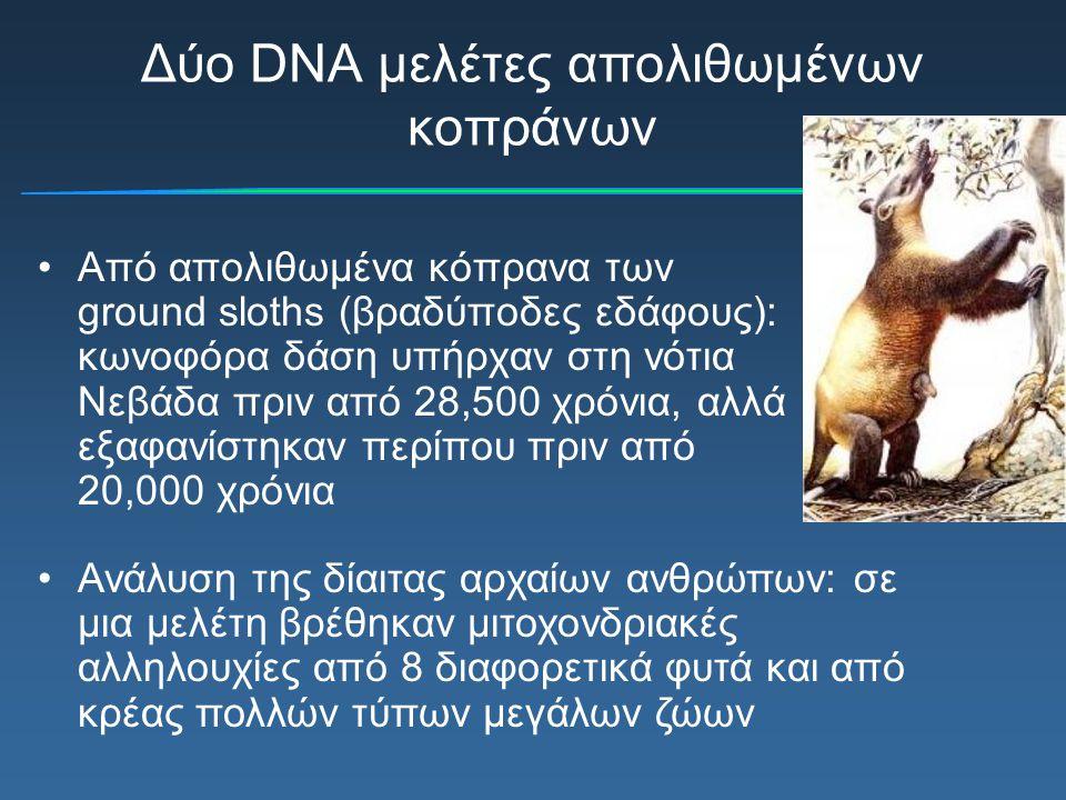 Δύο DNA μελέτες απολιθωμένων κοπράνων
