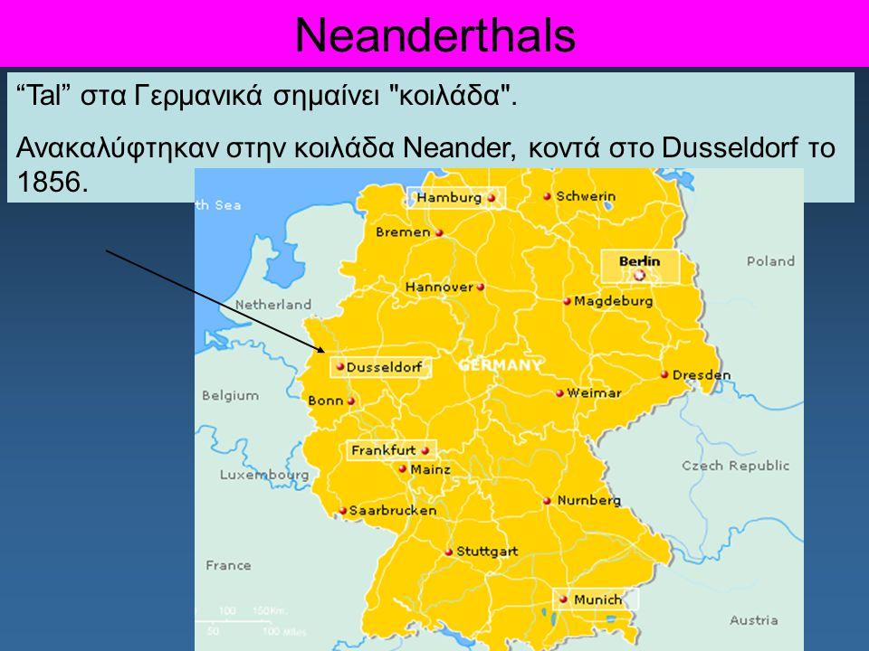 Neanderthals Tal στα Γερμανικά σημαίνει κοιλάδα .