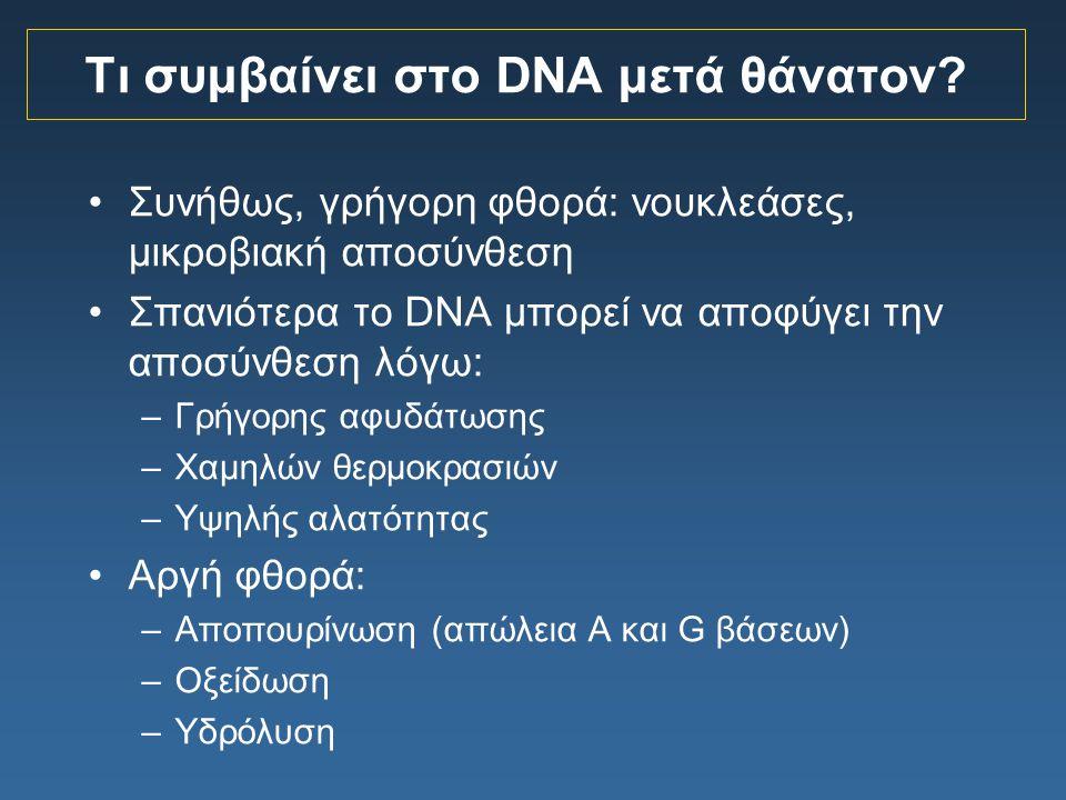 Τι συμβαίνει στο DNA μετά θάνατον
