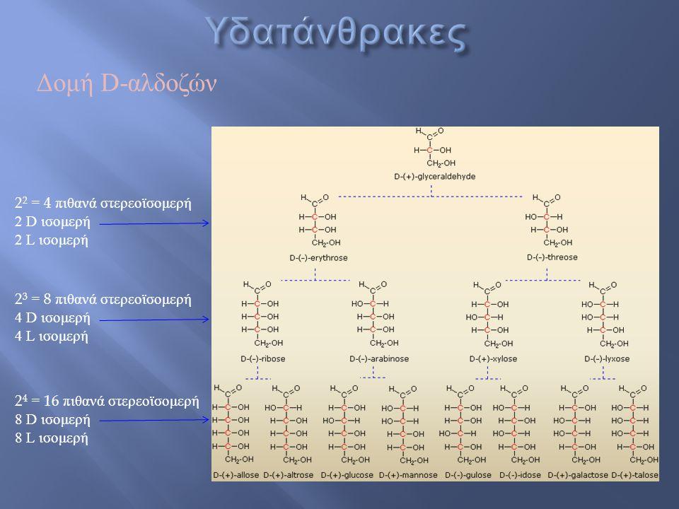 Υδατάνθρακες Δομή D-αλδοζών 22 = 4 πιθανά στερεοϊσομερή 2 D ισομερή