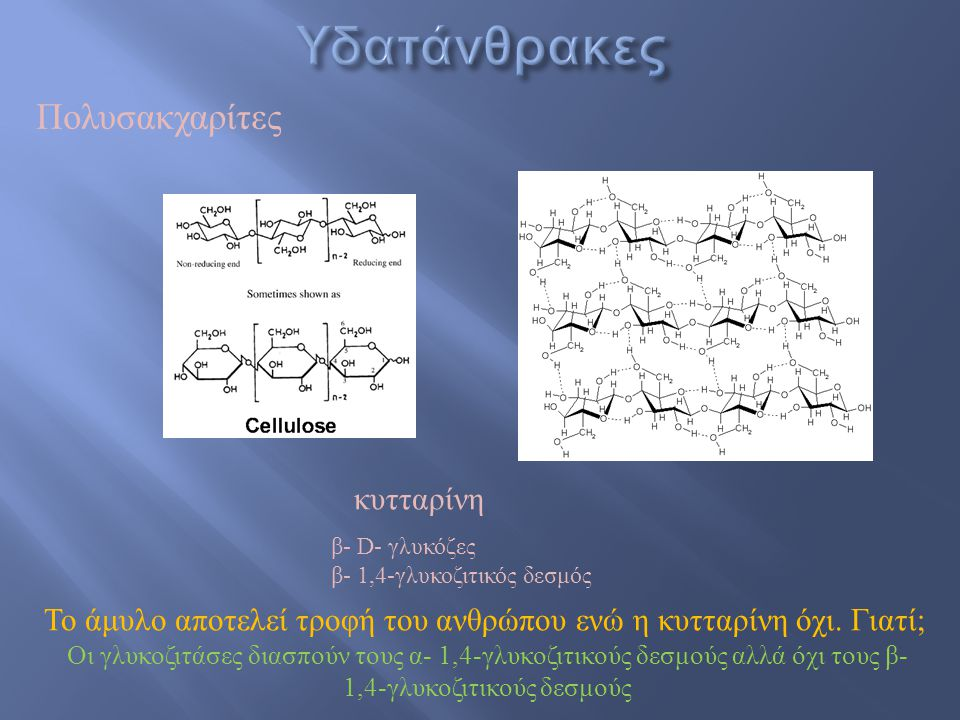 Υδατάνθρακες Πολυσακχαρίτες κυτταρίνη