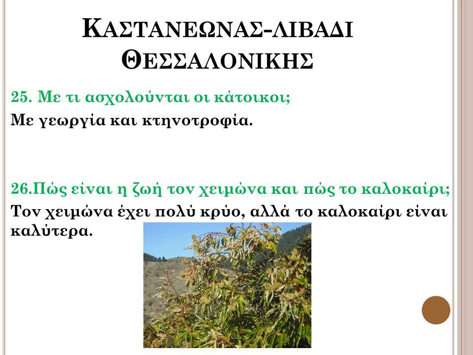 Καστανεωνασ-λιβαδι Θεσσαλονικησ